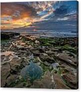 Blue And Gold Tidepools Canvas Print