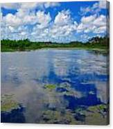 Blue And Green Cay Canvas Print