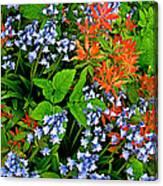 Blue And Red Flowers In Kuekenhof Flower Park-netherlands Canvas Print