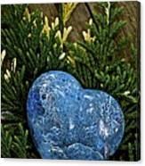 Blue Beauty Canvas Print