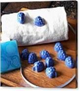 Blue Berries Mini Soaps Canvas Print