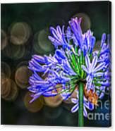 Blue Blooms Canvas Print