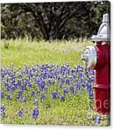 Blue Bonnets Fire Hydrant V2 Canvas Print