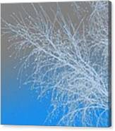 Blue Branches Canvas Print
