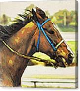 Blue Bridle Canvas Print