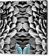 Blue Butterfly And Antenna Canvas Print