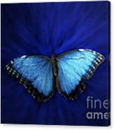 Blue Butterfly Ascending 02 Canvas Print