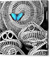Blue Butterfly Charleston Canvas Print