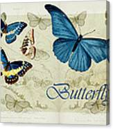 Blue Butterfly - S01a Canvas Print