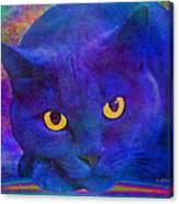 Blue Cat Ponders Canvas Print