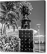 Blue Crown Statue Miami Downtown - Black And White Canvas Print
