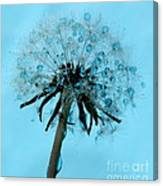 Blue Dandelion Wish Canvas Print