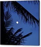 Blue Dawn Moon Canvas Print