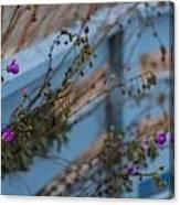 Blue Fence Purple Flowers Canvas Print