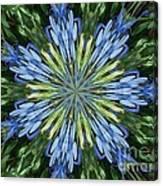 Blue Flower Star Canvas Print