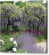 Blue Flowergarden With Wisteria Canvas Print