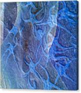 Blue Fossil Canvas Print