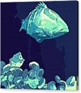 Blue Grouper Canvas Print