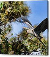 Blue Heron In The Trees Oil Canvas Print