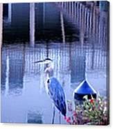 Blue Heron Reflections Canvas Print