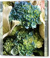 Blue Hydrangeas Painterly Canvas Print