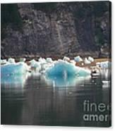 Blue Ice Flows Canvas Print