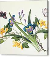 Blue Iris And Insects Canvas Print