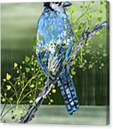 Blue Jay Mixed Media Canvas Print