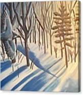 Blue Jay Winter Canvas Print