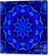 Blue Kaleidoscope  Canvas Print