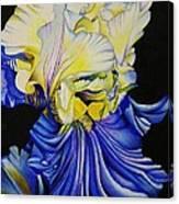 Blue Magic Canvas Print