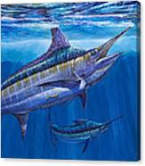 Blue Marlin Bite Off001 Canvas Print