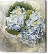 Blue Moon Canvas Print