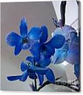 Blue Orchids At All Canvas Print