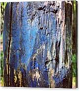 Blue Painted Wood #iccloseups #painted Canvas Print