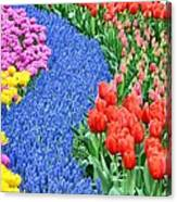 Blue Path Of Flowers Canvas Print
