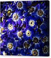 Blue Poem Canvas Print