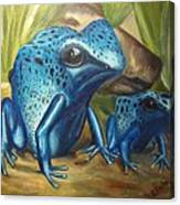 Blue Poison Dart Frog Canvas Print