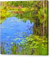 Blue Pond And Water Lilies Canvas Print