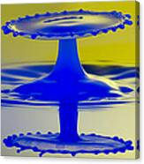 Blue Reflections Canvas Print