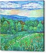 Blue Ridge Meadow Canvas Print
