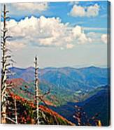 Blue Ridge Parkway Art-trees And Mountains Canvas Print
