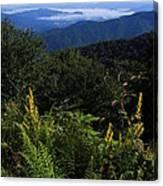 Blue Ridge Vista Canvas Print