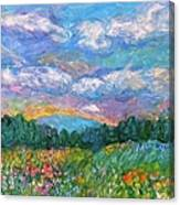 Blue Ridge Wildflowers Canvas Print