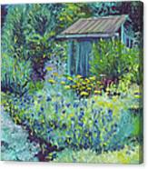 Blue Shed Canvas Print