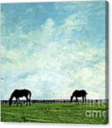 Blue Skies And Blue Grass Canvas Print