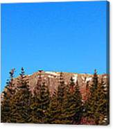Blue Sky - Cliff - Trees Canvas Print