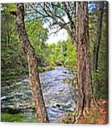 Blue Spring Branch 2 Canvas Print