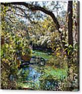 Blue Springs 1 Canvas Print