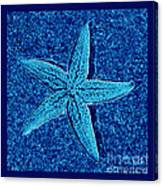 Blue Starfish - Digital Art Canvas Print